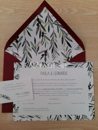 Conjunto hojas olivo