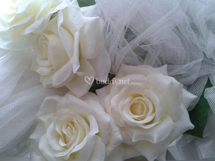 Oli Wedding Plannet