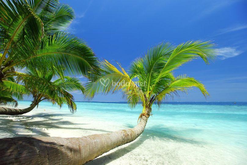 Lugares paradisíacos