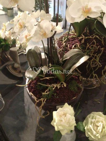 Flores Artificiales Sia
