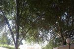 Do�a Mar�a de Hacienda Do�a Mar�a