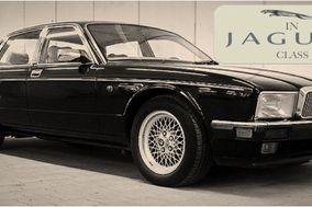 In Jaguar Class
