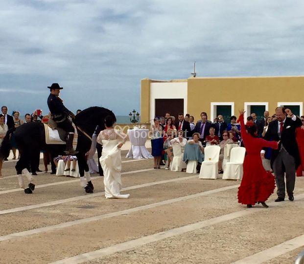 El Baluarte Cádiz