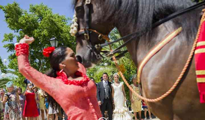 Flamenco a caballo