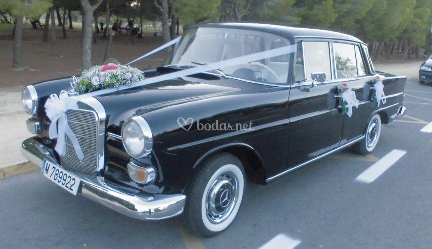 Mercedes cola
