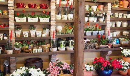 Asturflora Floristas 1