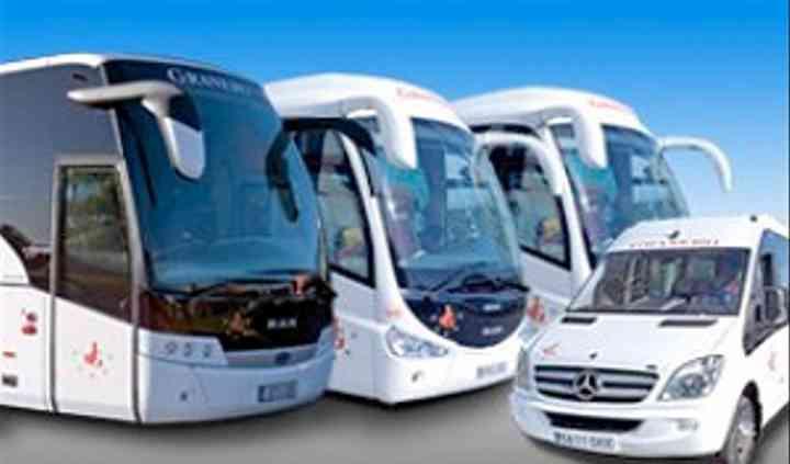 Variedad autobuses