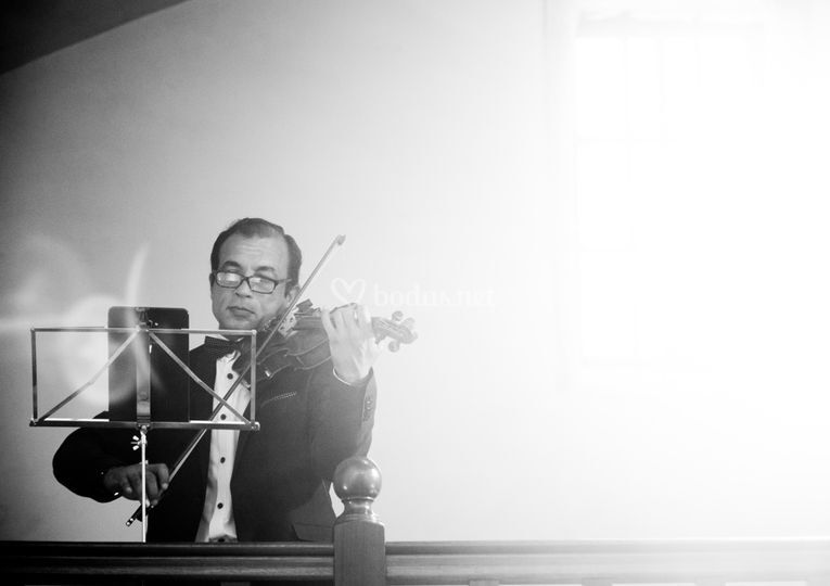 Gabriel Craciun - Violinista