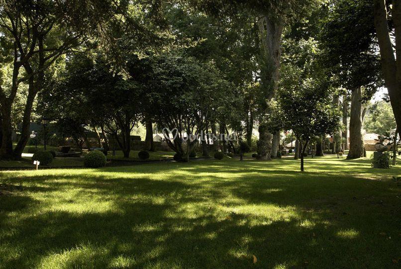 Jardín (III)