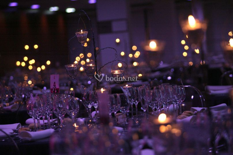 Luces del banquete
