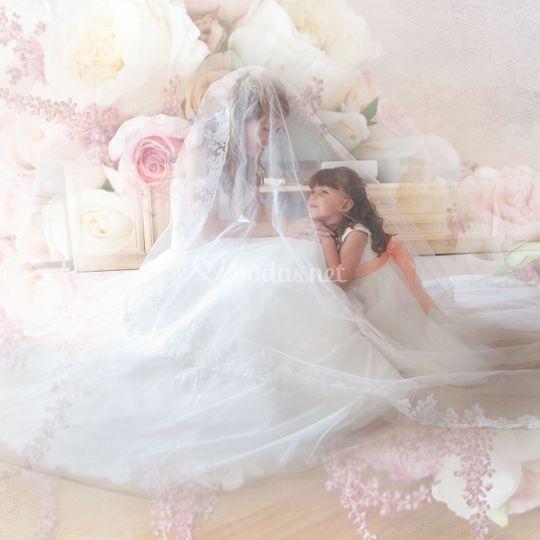 Peticion novia