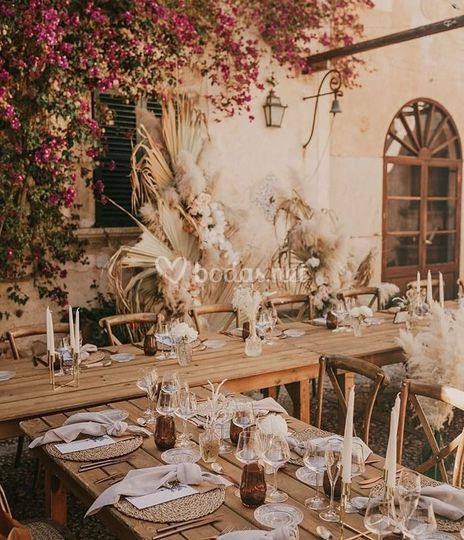 Olivia French Events