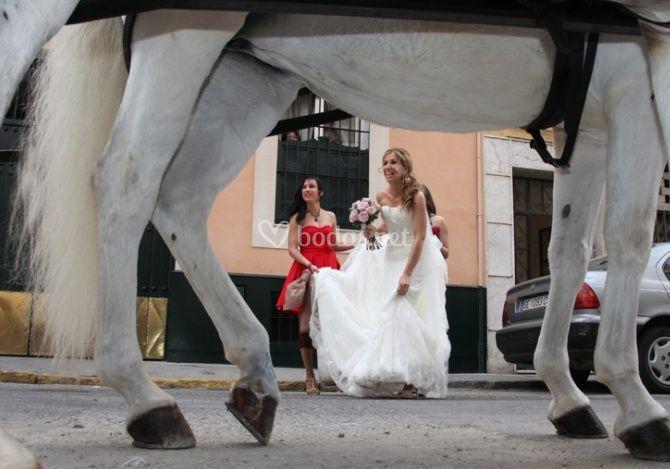 La sorpresa para la novia