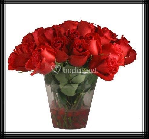 Composiciones con rosas