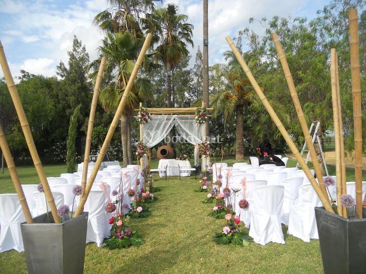 Montaje con bambú