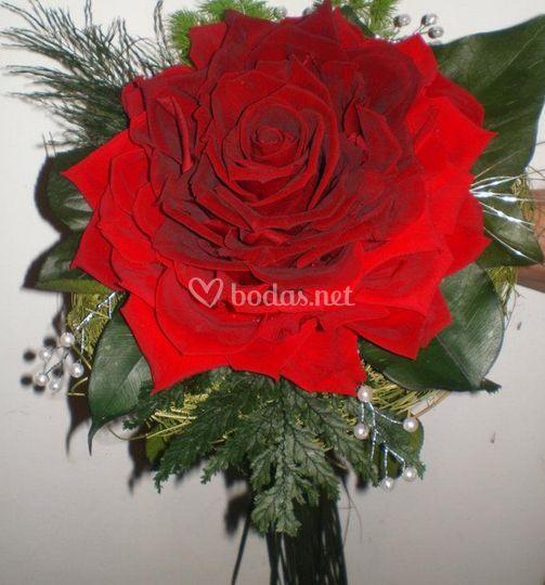 Rosas rojas preciosas