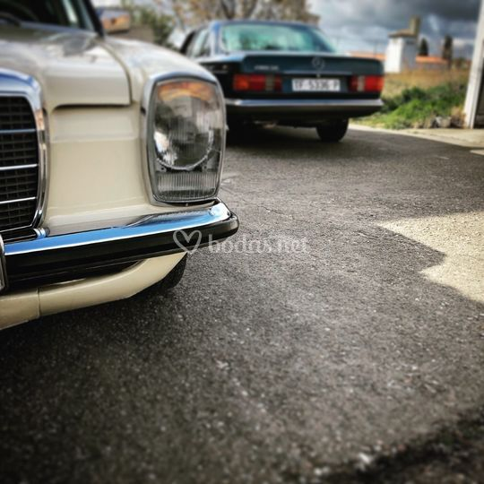 W115 y W126