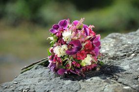Bitxilore Floristas