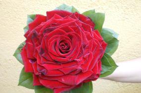 Floristería Floriplant
