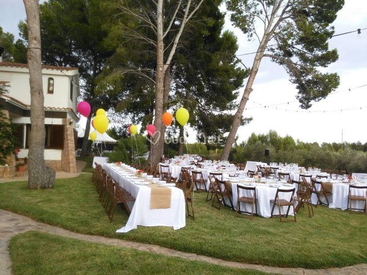 Banquete aire libre