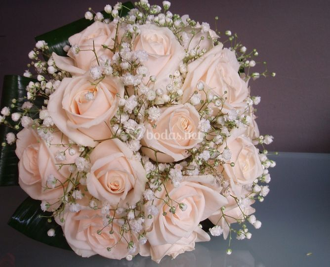 Rosas y peniculata