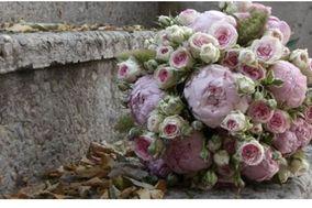 Myosotis Art Floral