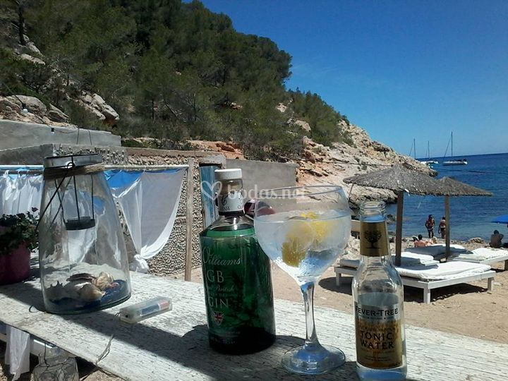 Best Brands in Ibiza