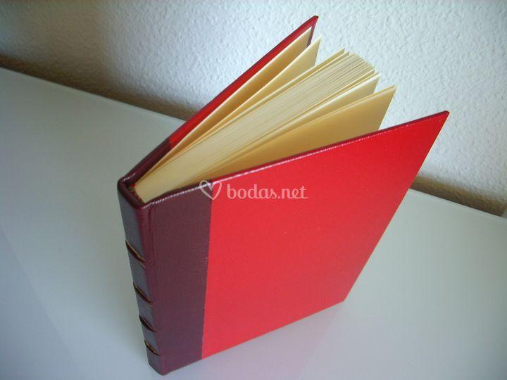 Libro media holandesa