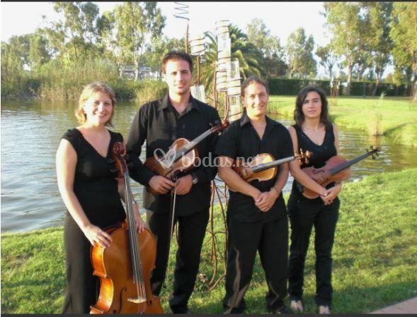 Quartet Saiti