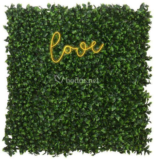Jardin y neon love