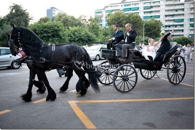 Coches de caballo para bodas