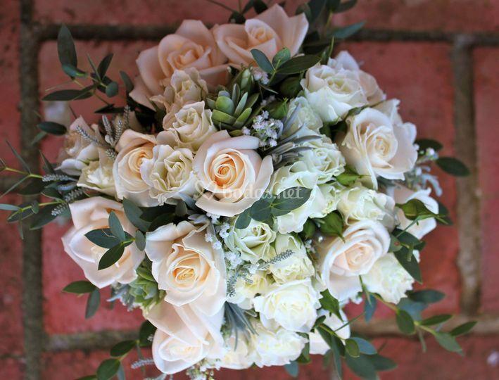 Rosa champagne y aromáticas