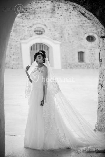 Novia elegante en blanco y negro