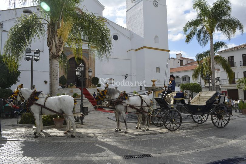 Centro Ecuestre El Rocio