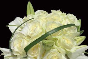 Flor Pasion