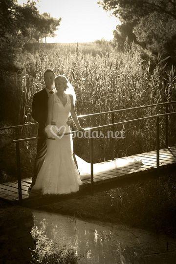 Luis Arenas - Día de la boda