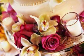 Orquídea Wedding