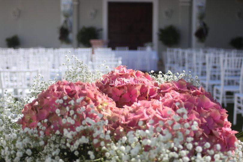 Rodeados de flores...