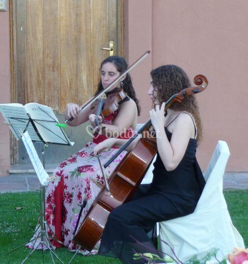 Cello y viola
