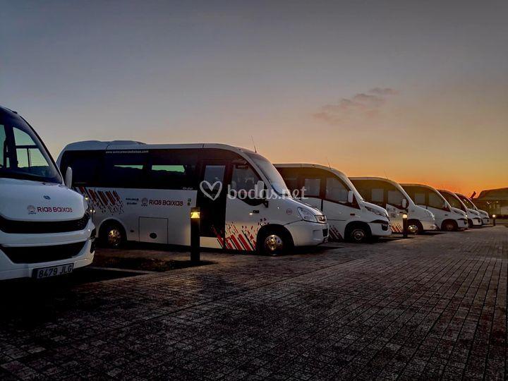 Flota de microbuses