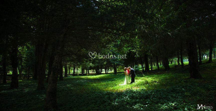 Novios en el bosque de moma fot grafs foto 27 - Moma fotografs ...