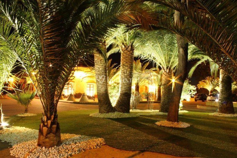 Jardines iluminado