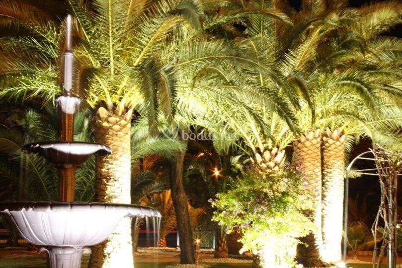 Nuestra Fuente de Hacienda El Alba