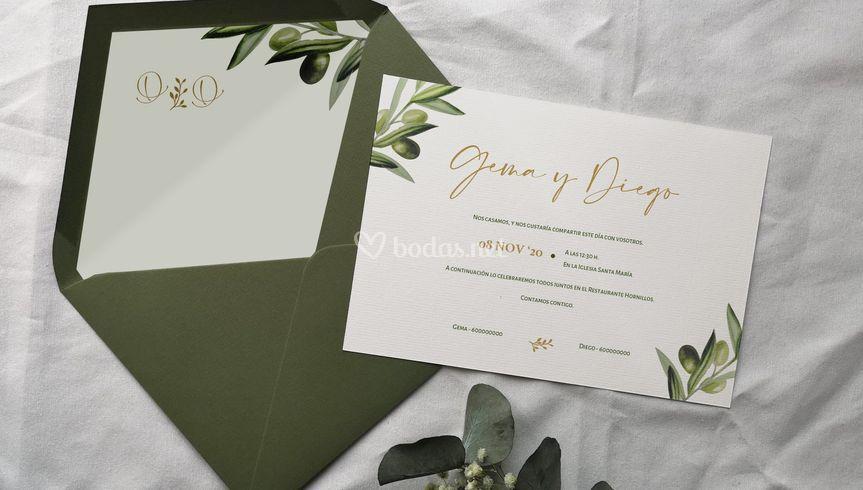 Colección botanical - Olivo