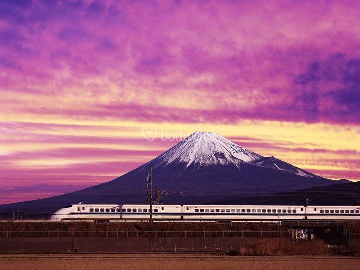 Viaje de novios Japón