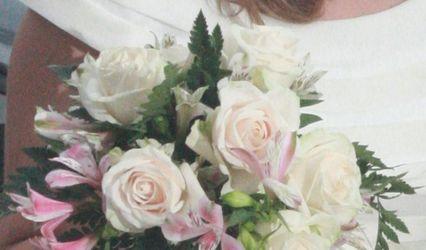 AR Flores 1