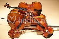 Instrumentos profesionales
