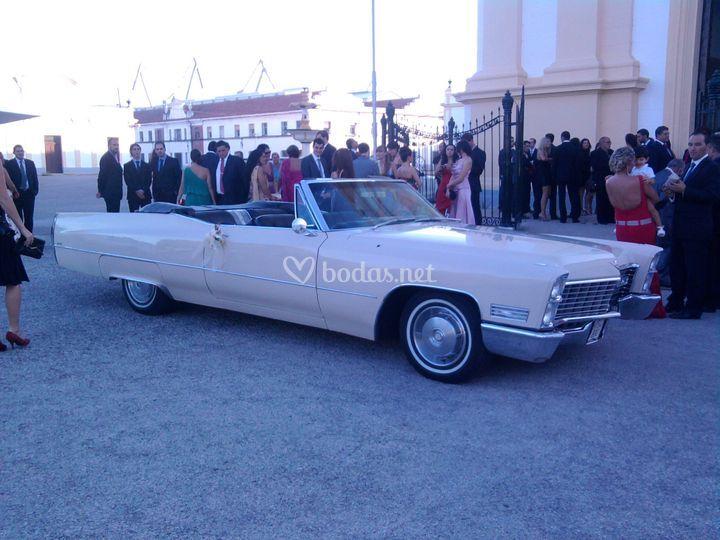 Cadillac san fernando