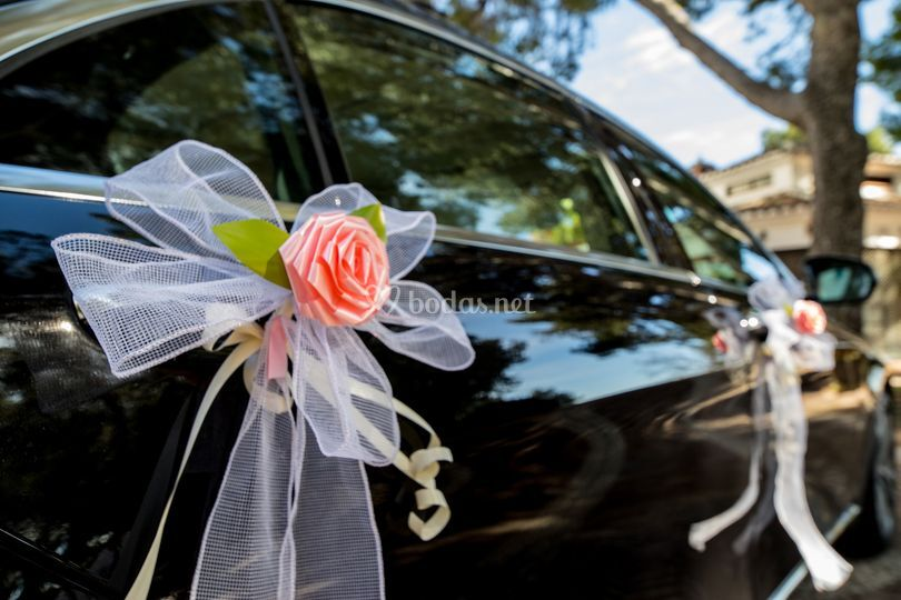 Ejemplo decoración vehículo