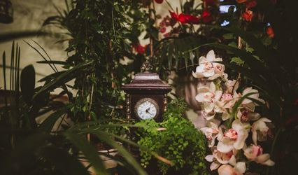 La Flor de Cerezo 3